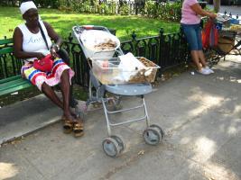 Habana, 2013