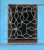 Fence, Havana, 2010